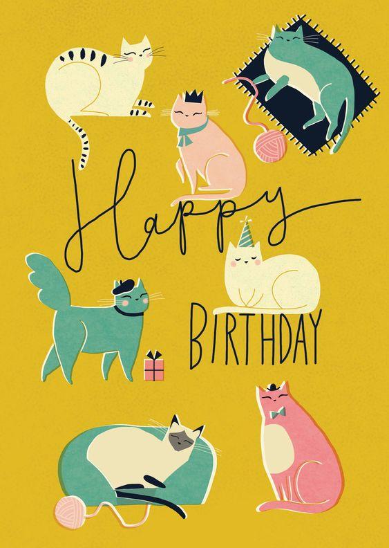 с днем рождения картинка с котами