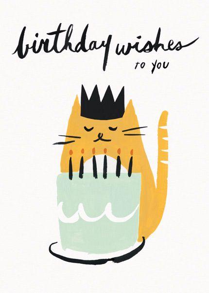 с днем рождения открытка с котом