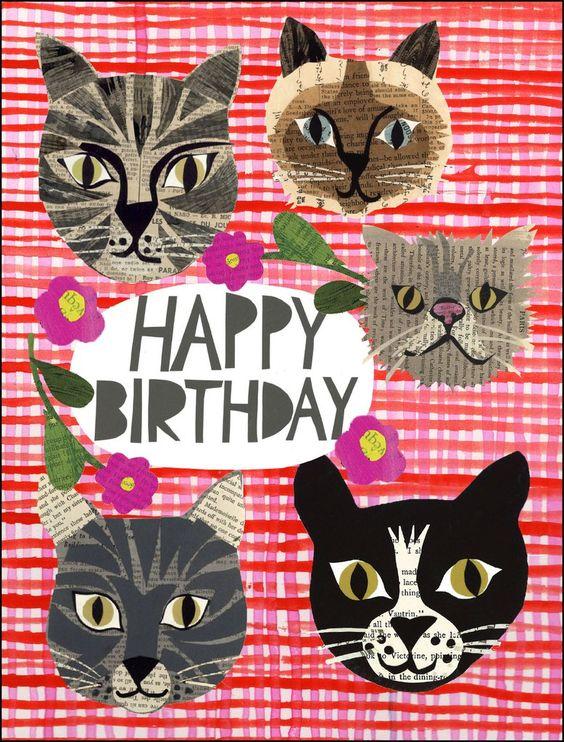 с днем рождения картинка морды котов