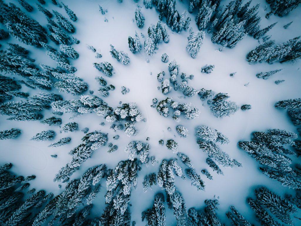 красиве фото зима