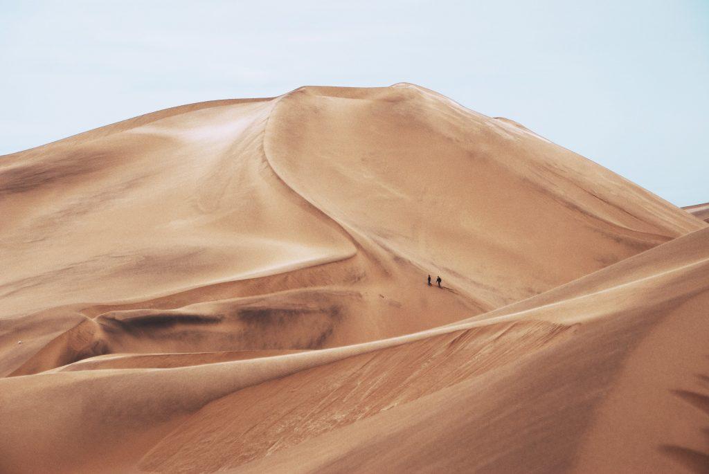 картинки пустелі