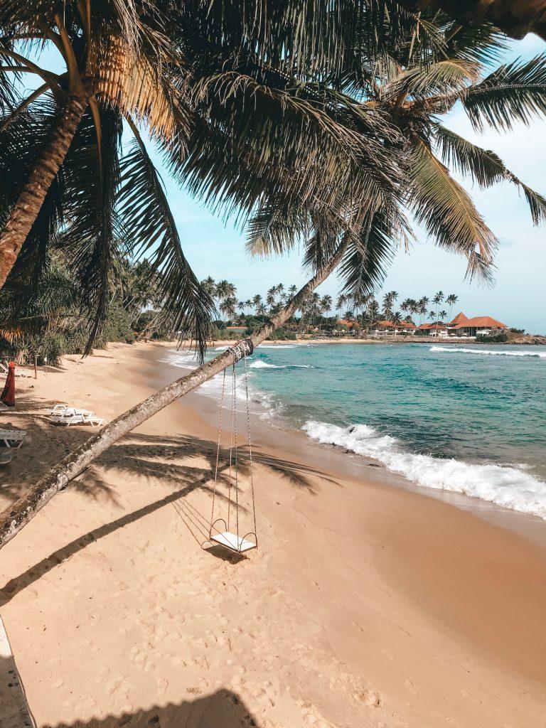 море літо пальми картинка