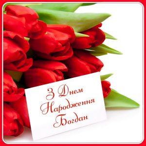 З днем народження Богдан