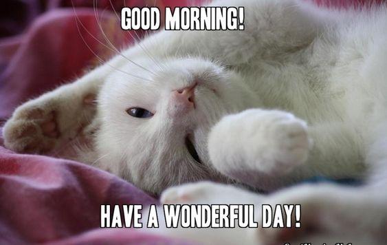 картинки good morning гарного дня